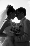 Sposato. fotografie stock