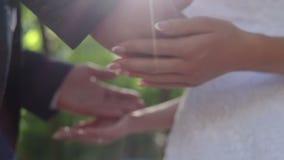 Sposato appena archivi video