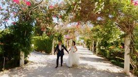 Spose che eseguono parco video d archivio