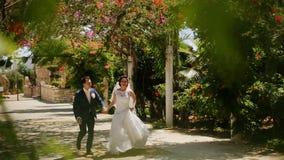 Spose che eseguono parco archivi video