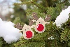 Sposi il Natale & il buon anno! Immagine Stock Libera da Diritti