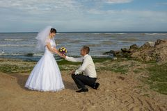 Sposo che si inginocchia prima della sposa Immagini Stock