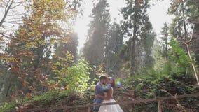 Sposo con la sposa vicino alle colline della montagna nelle coppie di nozze della foresta sunbeams video d archivio