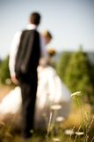 Sposo e fiore della sposa Fotografia Stock Libera da Diritti