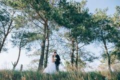 Sposo e sposa insieme Coppie di cerimonia nuziale Fotografia Stock