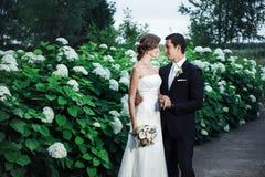 Sposo e una sposa che stringe a sé romanticamente fotografia stock libera da diritti