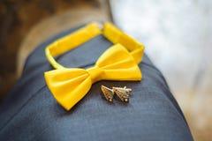 Sposo giallo della farfalla Fotografia Stock Libera da Diritti
