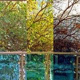 Spostamento delle stagioni Fogli di caduta Fotografia Stock Libera da Diritti