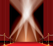 Spot on carpet Royalty Free Stock Images
