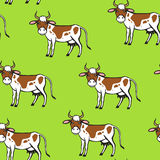 Spot cartoon cow pattern seamless on green background Royalty Free Stock Photos