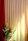 Spot light on a curtain Stock Image