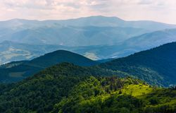 Spot of light on a forested hills of Carpathians. Lovely nature background in summertime on a cloudy day Stock Photo