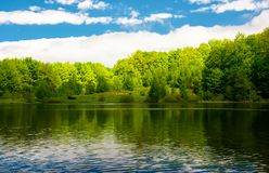 Spot of light on the forested shore of the lake. Gorgeous springtime landscape Stock Images