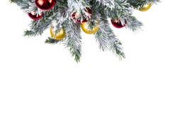 Spot omhoog met Kerstboom Kerstmis of Nieuwjaargrens De de wintervlakte lag Stock Afbeeldingen