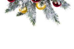 Spot omhoog met Kerstboom Kerstmis of Nieuwjaargrens De de wintervlakte lag Royalty-vrije Stock Foto