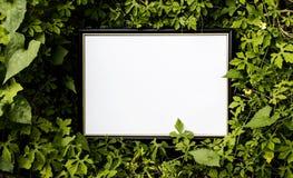 Spot op document witte kaart op groene bladeren Creatieve lay-out met Royalty-vrije Stock Foto