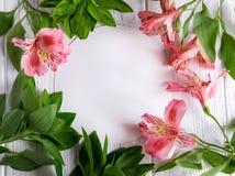 Spot op leeg document, postenvelop op een donkere houten achtergrond met natuurlijke bloemen van witte kleur en vlinders Spatie,  stock afbeeldingen