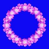 Spot op rond bloemenkader van bloemen van wilde die geranium op blauwe achtergrond wordt geïsoleerd royalty-vrije stock foto
