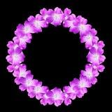 Spot op rond bloemenkader van bloemen van wilde die geranium op zwarte achtergrond wordt geïsoleerd Royalty-vrije Stock Foto