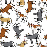 Spot, red, brown, black cows pattern seamless Stock Photo