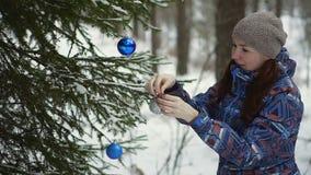 Spotkań boże narodzenia w lesie zbiory wideo