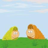 spotkanie łąkowi ślimaczki Zdjęcia Royalty Free