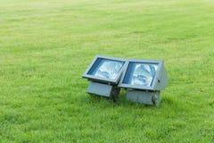 Spotlight in the green garden Royalty Free Stock Image