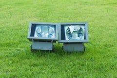 Spotlight in the green garden Stock Photos