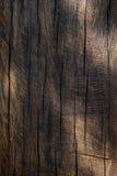 Spotlights on wood Royalty Free Stock Photography
