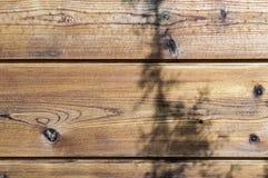 Spots on hard wood board Royalty Free Stock Photos