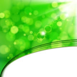 spots ny limefrukt för bakgrundsblur solljus Arkivfoton