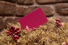 Spott oben des roten Visitenkartefanstapels auf strukturiertem Ziegelsteinhintergrund stockbild
