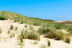 spottar det curonian havet för den baltiska kusten Royaltyfria Bilder