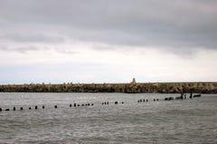 Spottat baltiskt Sikt av det baltiska havet Fotografering för Bildbyråer