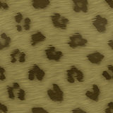 Spotted animal skin fur Stock Image