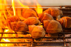 Spotted babylon shell grills  on flaming , Barbecue grill cookin Stock Photography