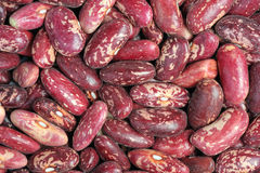 Spotted beans Stock Image