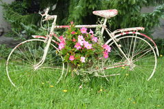 Spotted Bicycle With Flowers royalty free stock photography
