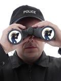 Spotted burglar Stock Photos