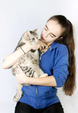Spotted cat in the hands of a teenage girl Stock Photography