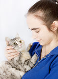 Spotted cat in the hands of a teenage girl Royalty Free Stock Photos