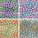Spotted Cat Pattern Stock Image