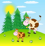 Spotted cows grazing in a meadow. Illustration Stock Images