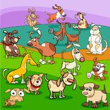Spotted dogs cartoon characters group. Cartoon Illustration of Spotted Dogs and Puppies Animal Characters Group Royalty Free Stock Photo
