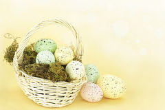 Spotted Easter Eggs Royalty Free Stock Image