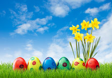 Spotted easter eggs in grass with flowers Stock Photo
