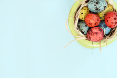 Spotted eggs on blue background Stock Images