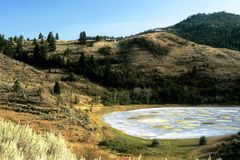 Spotted Lake. This image was taken in the Okanagan in British Colombia Canada and shows a spotted lake Royalty Free Stock Images