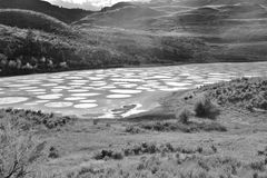 Spotted lake in Okanagan Vallye, Osoyoos, British Columbia. Royalty Free Stock Photo