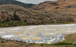 Spotted Lake. Is a saline endorheic alkali lake located northwest of Osoyoos in the eastern Similkameen Valley of British Columbia, Canada Stock Images